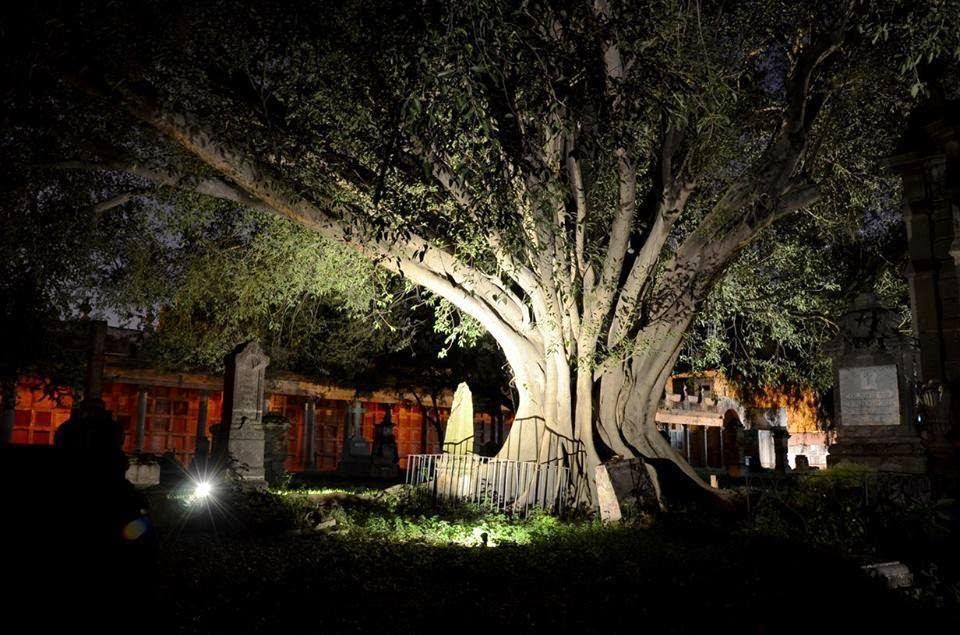 El árbol del vampiro Leyenda del panteón de Belén (Guadalajara) 1