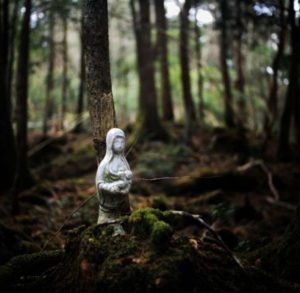 """Aokigahara """"El bosque de los suicidios en Japón"""" 3"""