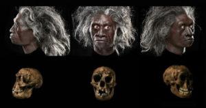 Ebu Gogo, la otra especie de humanos caníbales 4