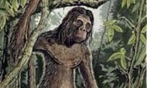 Ebu Gogo, la otra especie de humanos caníbales 6