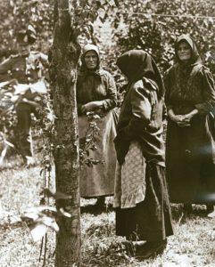 Las viudas que mataron a sus maridos 5