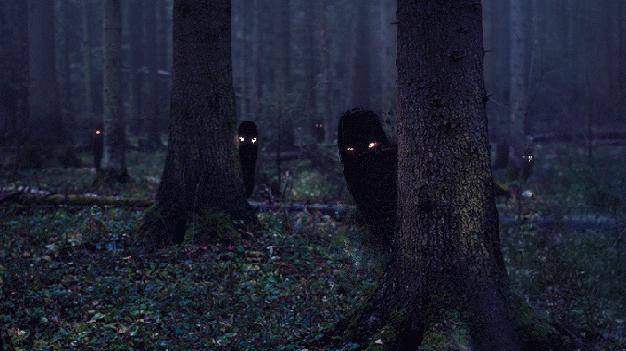 Los 5 bosques con más actividad paranormal en el mundo 1