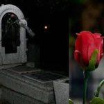 La tumba de las rosas 7