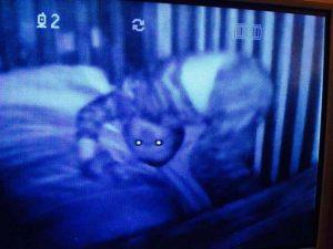 15 espeluznantes fotografías capturadas desde monitores de bebés 6