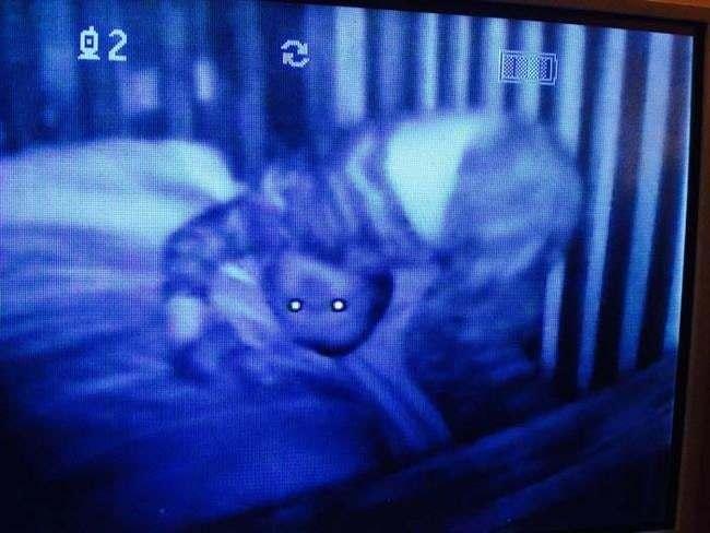 15 espeluznantes fotografías capturadas desde monitores de bebés 1